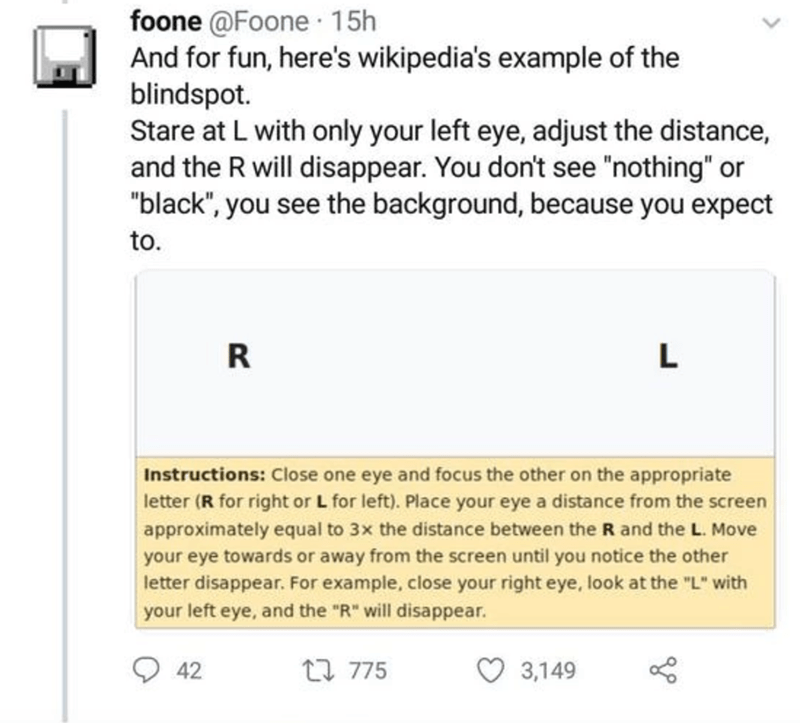 """Text - foone @Foone 15h And for fun, here's wikipedia's example of the blindspot. Stare at L with only your left eye, adjust the distance, and the R will disappear. You don't see """"nothing"""" or """"black"""", you see the background, because you expect to. R L Instructions: Close one eye and focus the other on the appropriate letter (R for right or L for left). Place your eye a distance from the screen approximately equal to 3x the distance between the R and the L. Move your eye towards or away from the"""