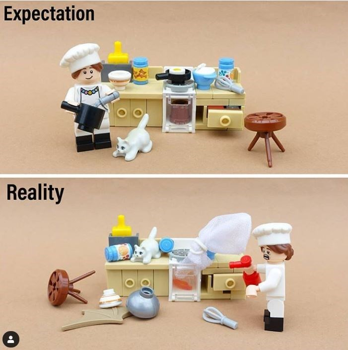 Toy - Expectation Reality