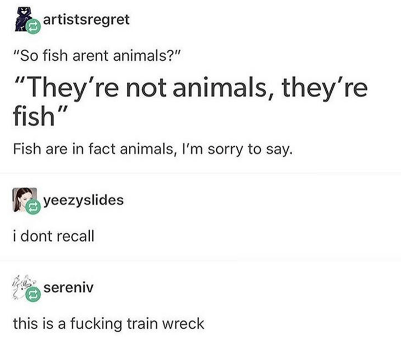 """Text - artistsregret """"So fish arent animals?"""" """"They're not animals, they're fish"""" Fish are in fact animals, I'm sorry to say. yeezyslides i dont recall sereniv this is a fucking train wreck"""