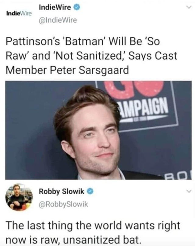 Text - IndieWire IndieWire @IndieWire Pattinson's 'Batman' Will Be 'So Raw' and 'Not Sanitized' Says Cast Member Peter Sarsgaard IMPAIGN BO Robby Slowik @RobbySlowik The last thing the world wants right now is raw, unsanitized bat.