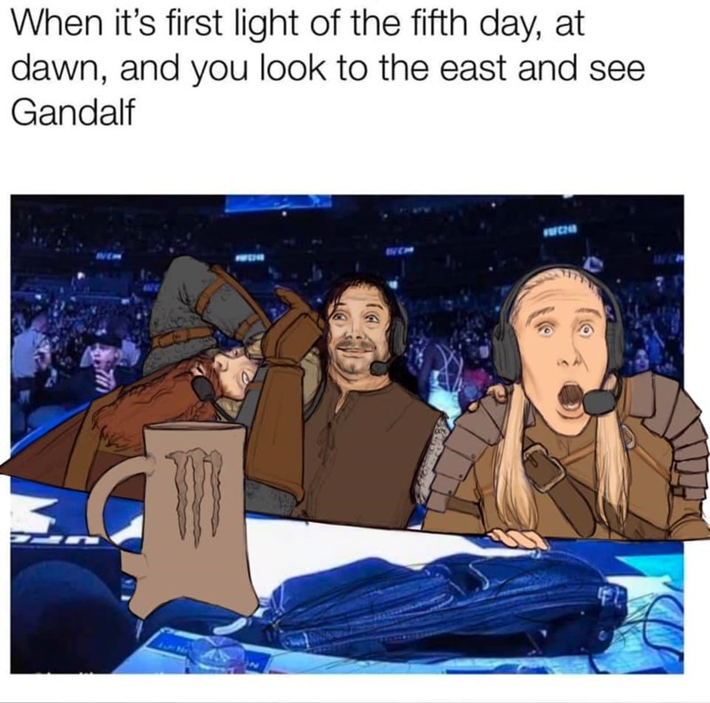 Cartoon - When it's first light of the fifth day, at dawn, and you look to the east and see Gandalf FFCH