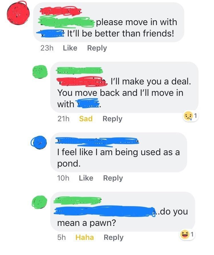Text - please move in with It'll be better than friends! 23h Like Reply l'll make you a deal. You move back and l'll move in with 1 21h Sad Reply I feel like I am being used as a pond. 10h Like Reply .do you mean a pawn? 5h Haha Reply