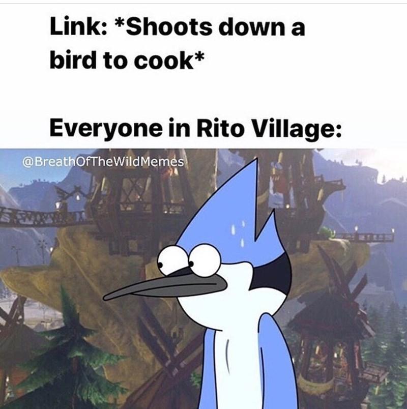 Cartoon - Link: *Shoots down a bird to cook* Everyone in Rito Village: @BreathOfTheWildMemes