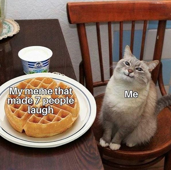 my meme that made 7 people laugh me | cute smiling cat next to a waffle on a plate