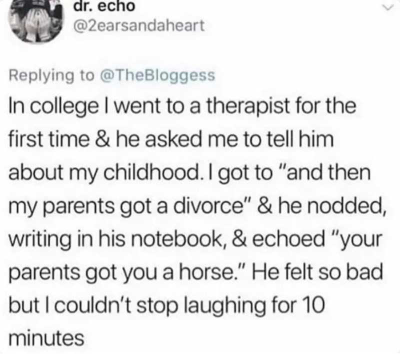 """Text - dr. echo @2earsandaheart Replying to @TheBloggess In college I went to a therapist for the first time & he asked me to tell him about my childhood. I got to """"and then my parents got a divorce"""" & he nodded, writing in his notebook, & echoed """"your parents got you a horse."""" He felt so bad but I couldn't stop laughing for 10 minutes"""
