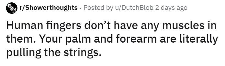 Text - r/Showerthoughts Posted by u/DutchBlob 2 days ago Human fingers don't have any muscles in them. Your palm and forearm are literally pulling the strings.
