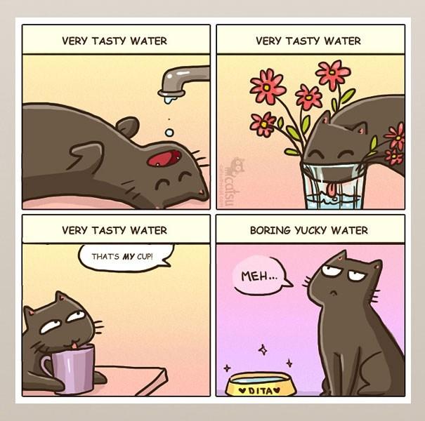 Cartoon - VERY TASTY WATER VERY TASTY WATER VERY TASTY WATER BORING YUCKY WATER THATS MY CUP! MEH.. VDITAV catsu