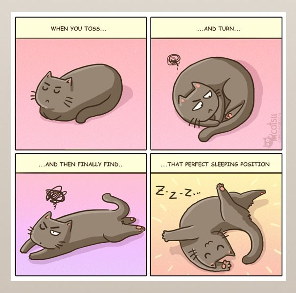 Organism - WHEN YOU TOSS... ...AND TURN... ...AND THEN FINALLY FIND.. .THAT PERFECT SLEEPING POSITION Z-z-Z. catsu