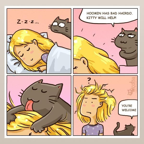 Cartoon - HOOMIN HAS BAD HAIRDO. KITTY WILL HELP! Z.Z z... YOU'RE WELCOME