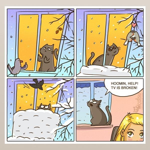 Cartoon - HOOMIN, HELP! TV IS BROKEN! catsu