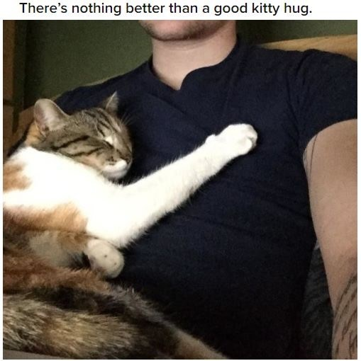Cat - There's nothing better than a good kitty hug.