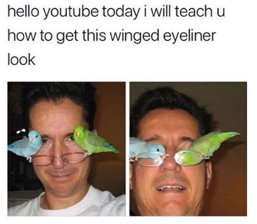 hello youtube today i will teach u how to get this winged eyeliner look man with two birbs small birds sitting on his glasses