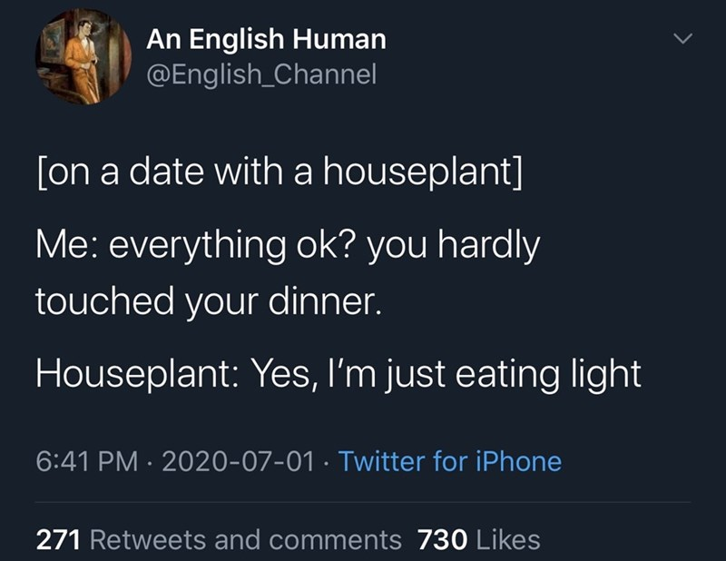 Funny Twitter meme about being on a date with a houseplant | An English Human @English_Channel [on a date with a houseplant] Me: everything ok? you hardly touched your dinner. Houseplant: Yes, I'm just eating light