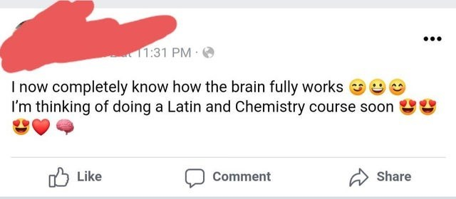 Text - ... 11:31 PM I now completely know how the brain fully works I'm thinking of doing a Latin and Chemistry course soon O Like Comment Share