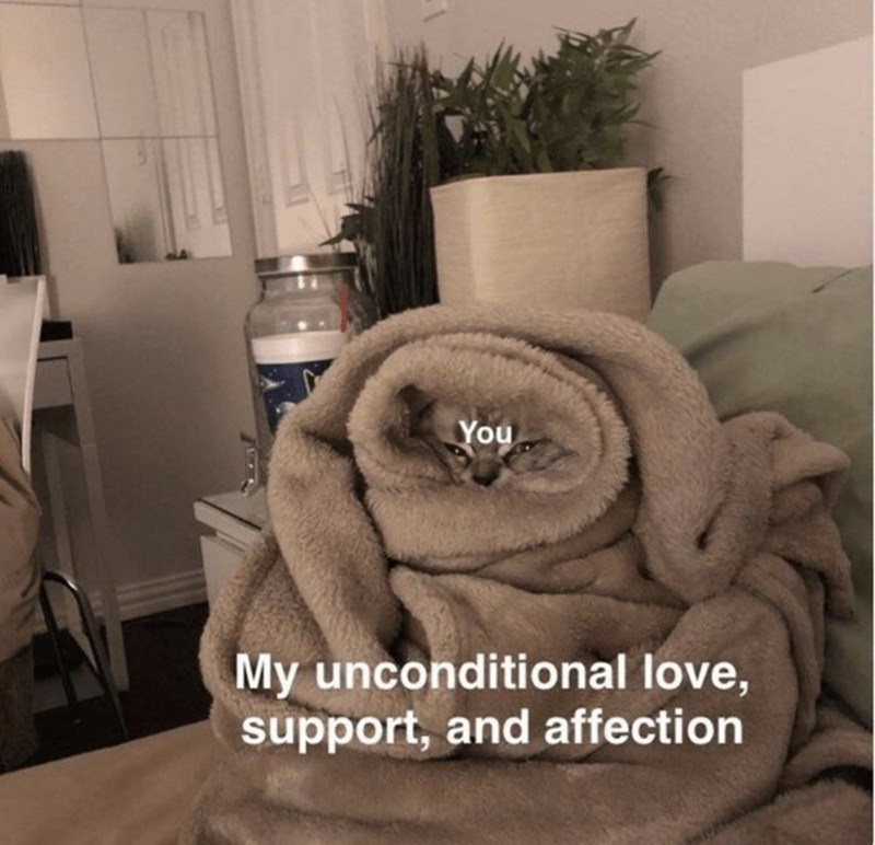 Fur - You My unconditional love, support, and affection