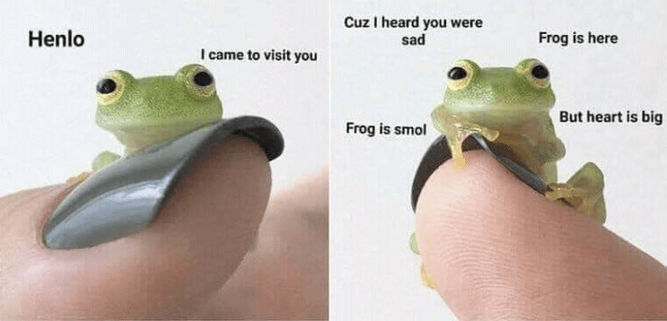 Frog - Cuz I heard you were sad Henlo Frog is here I came to visit you But heart is big Frog is smol
