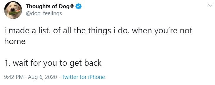 Text - Thoughts of Dog® @dog_feelings i made a list. of all the things i do. when you're not home 1. wait for you to get back 9:42 PM · Aug 6, 2020 · Twitter for iPhone