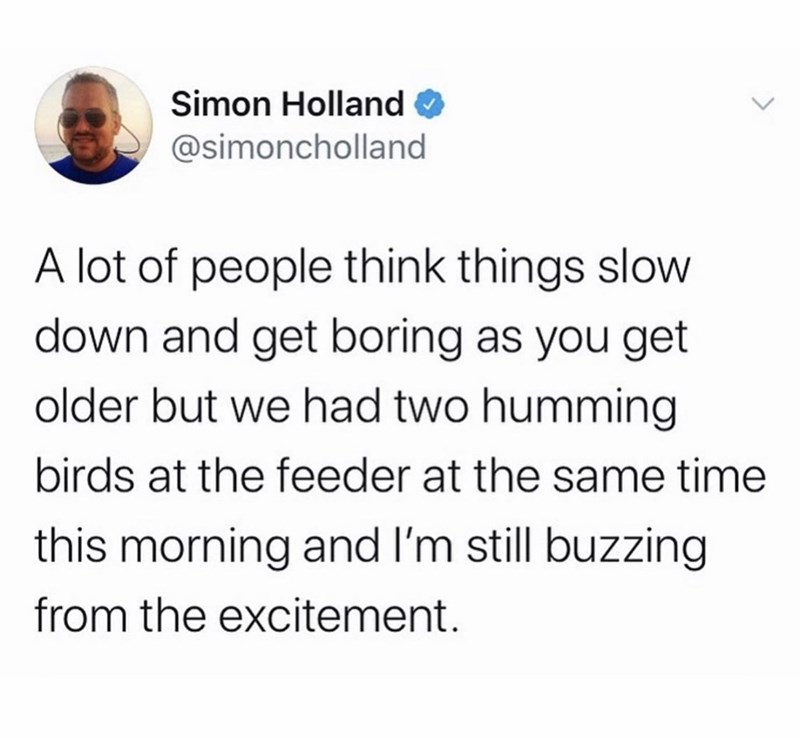 Text - Simon Holland @simoncholland A lot of people think things slow down and get boring as you get older but we had two humming birds at the feeder at the same time this morning and I'm still buzzing from the excitement.