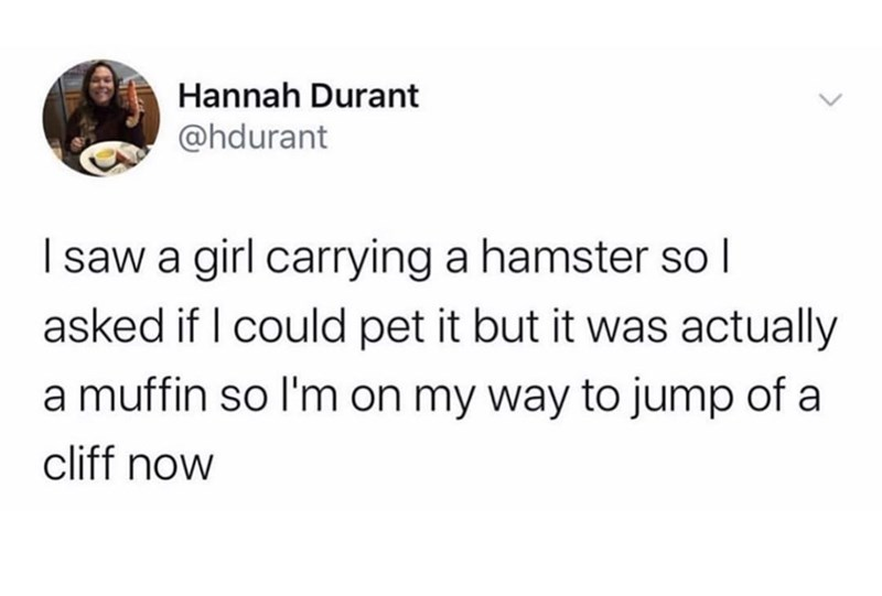 Text - Hannah Durant @hdurant I saw a girl carrying a hamster so I asked if I could pet it but it was actually a muffin so l'm on my way to jump of a cliff now