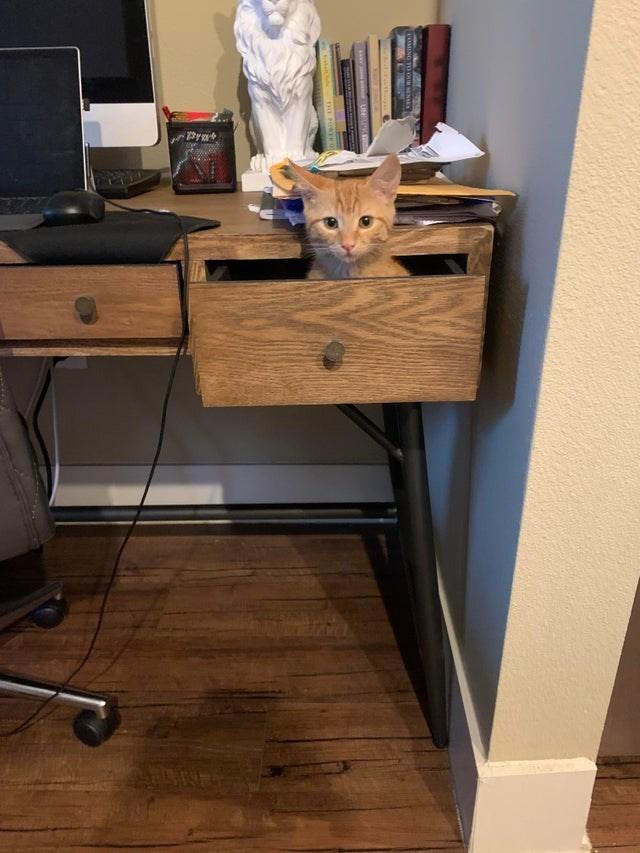 Desk - Pra THE POREO