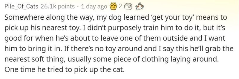 Text - Pile_Of_Cats 26.1k points · 1 day ago 2 Somewhere along the way, my dog learned 'get your toy' means to pick up his nearest toy. I didn't purposely train him to do it, but it's good for when he's about to leave one of them outside and I want him to bring it in. If there's no toy around and I say this he'll grab the nearest soft thing, usually some piece of clothing laying around. One time he tried to pick up the cat.