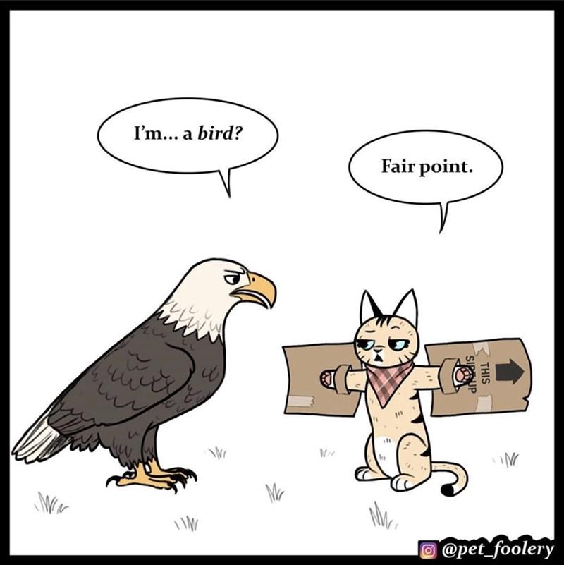 Cartoon - I'm... a bird? Fair point. Mr O @pet_foolery THIS SUP