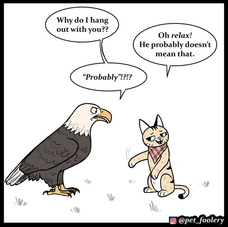 """Cartoon - Why do I hang out with you?? Oh relax! He probably doesn't mean that. """"Probably""""!?!? Mr O @pet_foolery"""