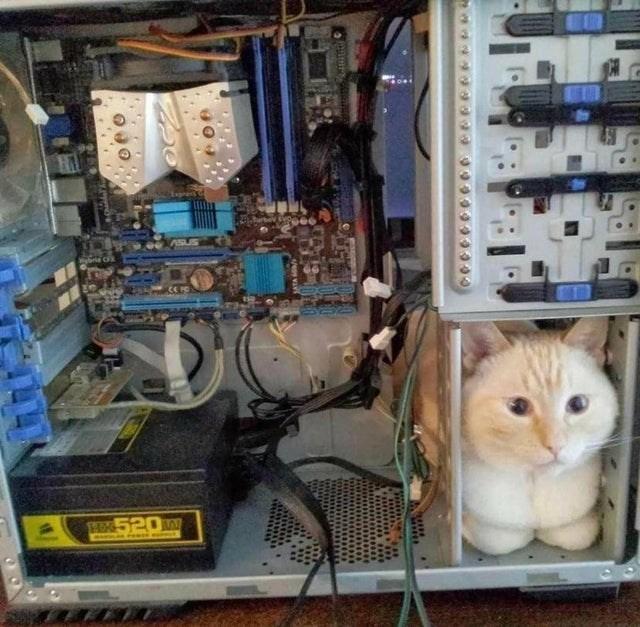 Cat - HE520W ROED