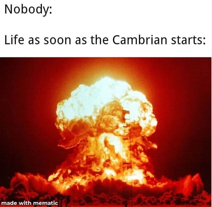 Heat - Nobody: Life as soon as the Cambrian starts: made with mematic