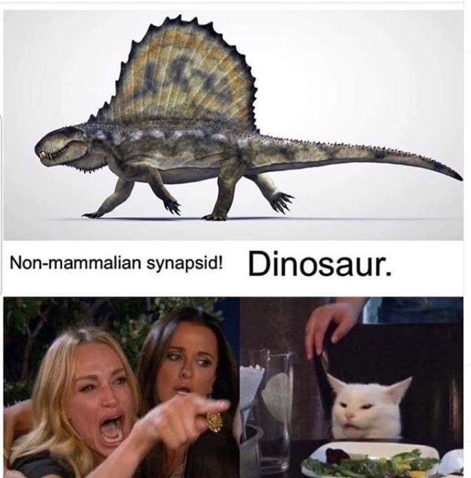 Dinosaur - Non-mammalian synapsid! Dinosaur.