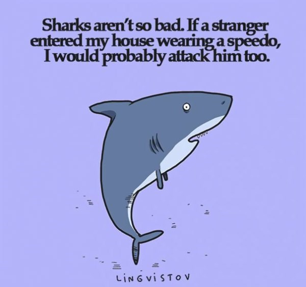 Marine mammal - Sharks aren't so bad. If a stranger entered my house wearing a speedo, Iwould probably attack him too. LING vi STO v