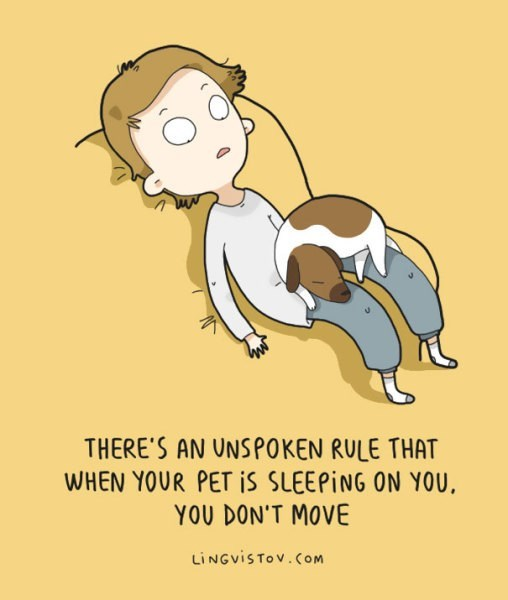 Cartoon - THERE'S AN UNSPOKEN RULE THAT WHEN YOUR PET IS SLEEPING ON YOU, YOU DON'T MOVE LINGVISTOV.COM
