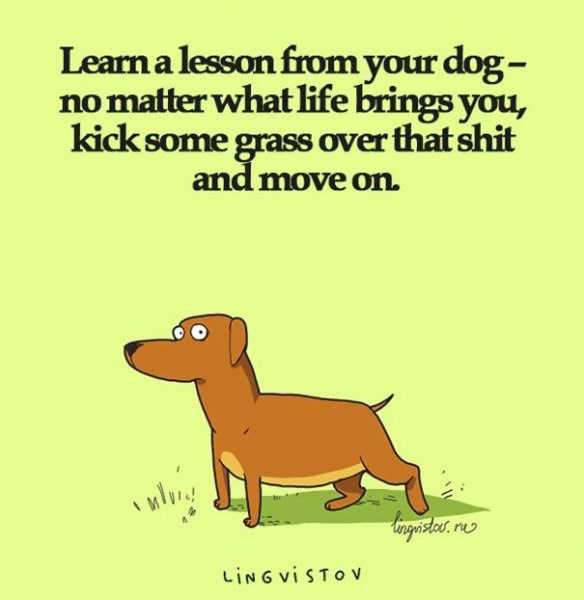 Dog - Learn a lesson from your dog- no matter what life brings you, kick some grass over that shit and move on LING vi STOV