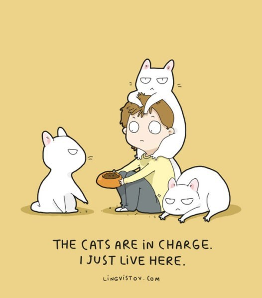 Cartoon - THE CATS ARE IN CHARGE. I JUST LIVE HERE. LINGVISTOV. COM