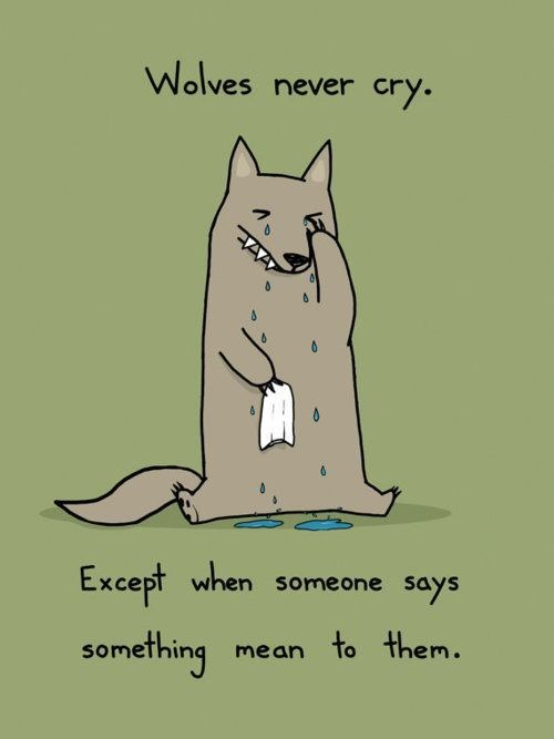 Cat - Wolves never cry. Except when something someone says mean to them.