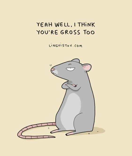 Rat - YEAH WE LL, I THINK YOU'RE GROSS Too LINGVISTOV.COM