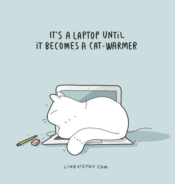Text - IT'S A LAPTOP UNTIL IT BECOMES A CAT-WARMER LING VISTOV.CoM