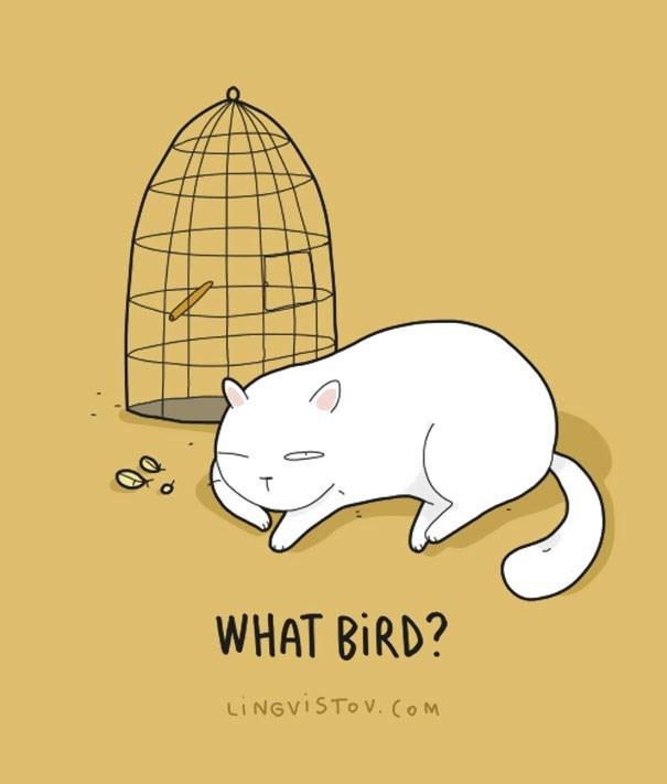 Cartoon - WHAT BIRD? LINGVISTOV. COM