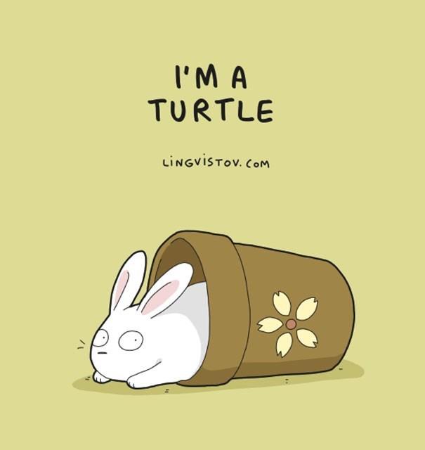 Rabbit - I'M A TURTLE LiNGviSTov. COM