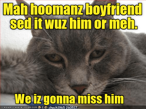 Cat - Mah hoomanz boyfriend sed it wuz him or meh. We iz gonna miss him ICANHASCHEEZBURGER.COM O chech1965 260517