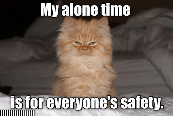 Cat - My alone time is for everyone's safety.