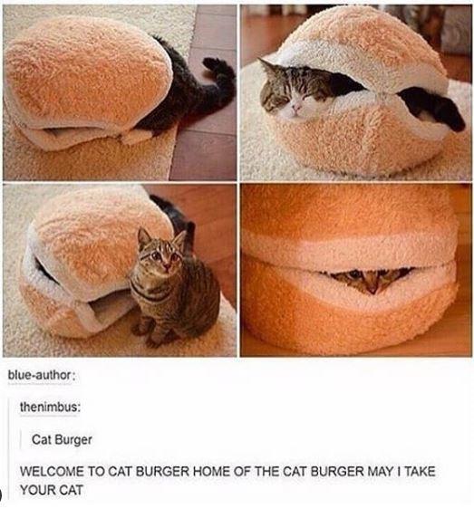 Nose - blue-author: thenimbus: Cat Burger WELCOME TO CAT BURGER HOME OF THE CAT BURGER MAY I TAKE YOUR CAT