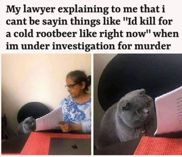 """Text - My lawyer explaining to me that i cant be sayin things like """"Id kill for a cold rootbeer like right now"""" when im under investigation for murder"""