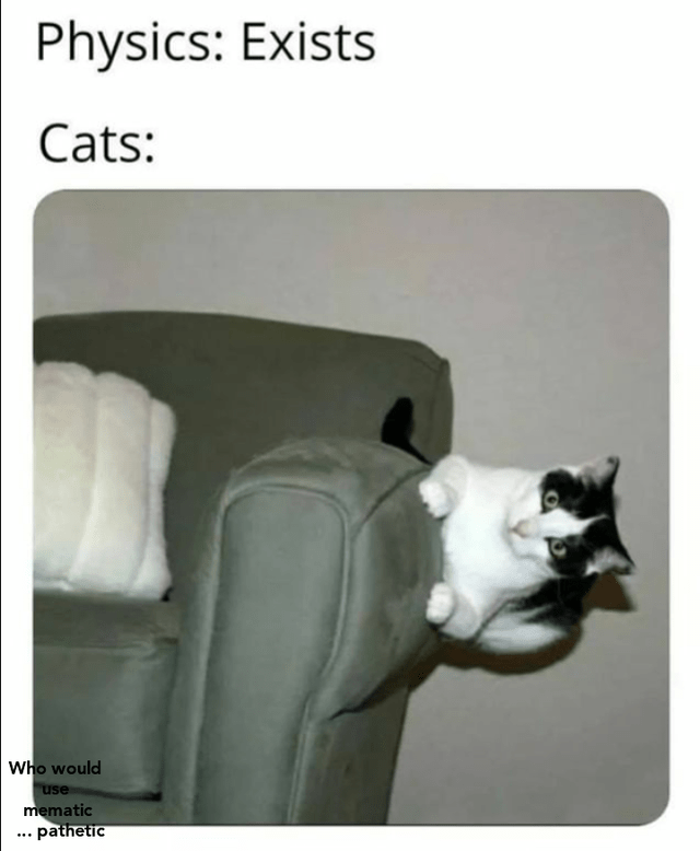 Cat - Physics: Exists Cats: Who would use mematic .. pathetic