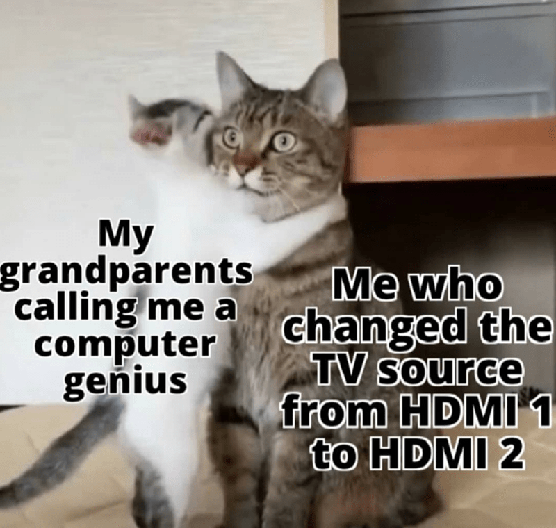 Cat - Мy grandparents calling me a computer geňius Me who changed the TV source from HDMI 1 to HDMI 2