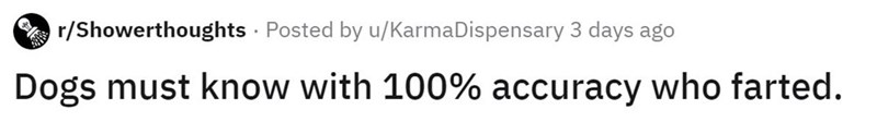 Text - r/Showerthoughts · Posted by u/KarmaDispensary 3 days ago Dogs must know with 100% accuracy who farted.