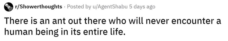 Text - r/Showerthoughts · Posted by u/AgentShabu 5 days ago There is an ant out there who will never encounter a human being in its entire life.