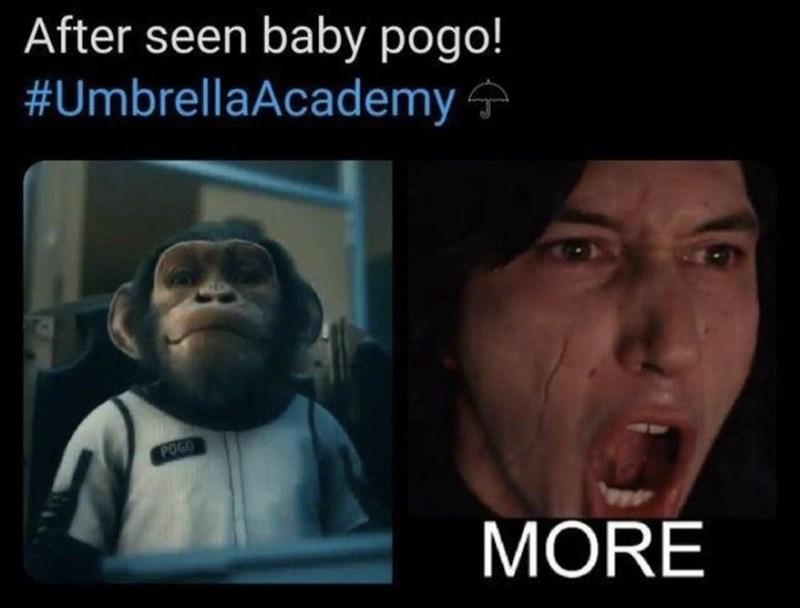 Face - After seen baby pogo! #UmbrellaAcademy 4 POGO MORE