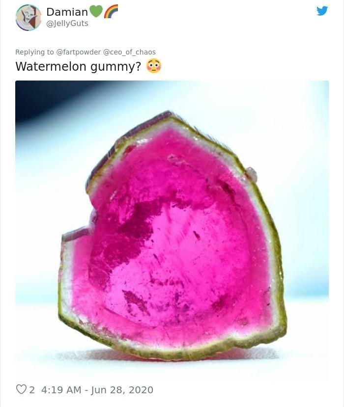 Plant - Damian @JellyGuts Replying to @fartpowder @ceo_of_chaos Watermelon gummy? 2 4:19 AM - Jun 28, 2020