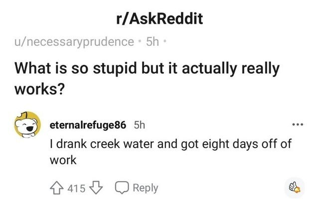 Text - r/AskReddit u/necessaryprudence · 5h · What is so stupid but it actually really works? eternalrefuge86 5h I drank creek water and got eight days off of work 415 Reply